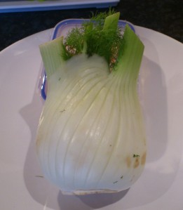 The fennel bulb